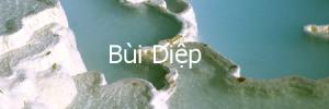 buidiep