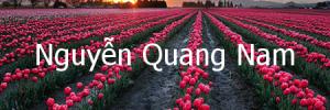 nguyenquangnam