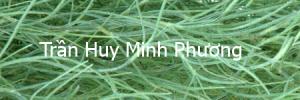 tranhuyminhphuong