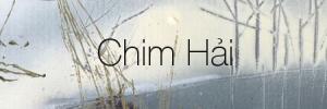 chimhai