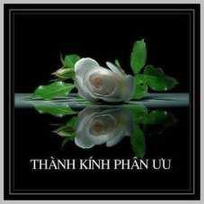 Image result for Phân Ưu